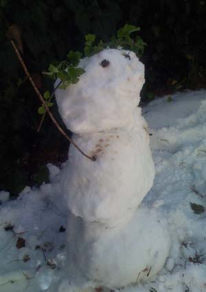 A snowman with branch crown